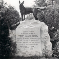http://www.digark.us/imageserver/WWI/WEB_NW/WWI_NY0001_OB_0001.jpg
