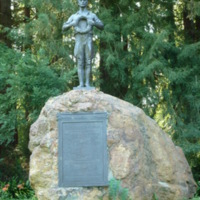 http://digark.us/imageserver/WWI/WEB_NW/CA_Golden_Gate_Park_Grove_of_Memory_Doughboy.jpg